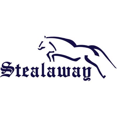 Stealaway Logo