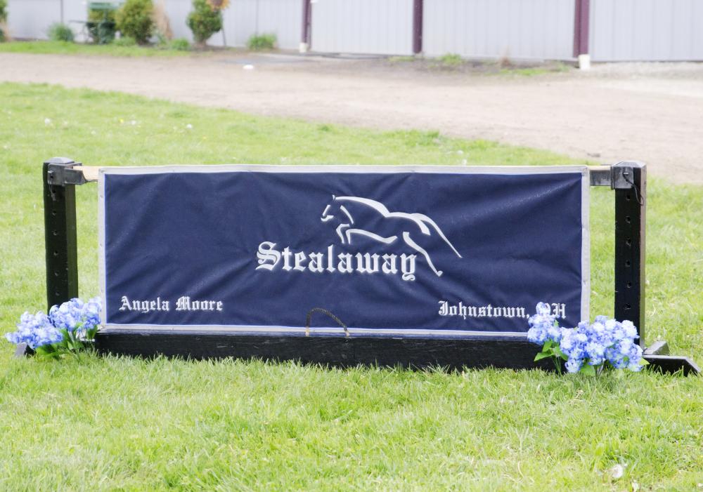 Stealaway Inc Banner