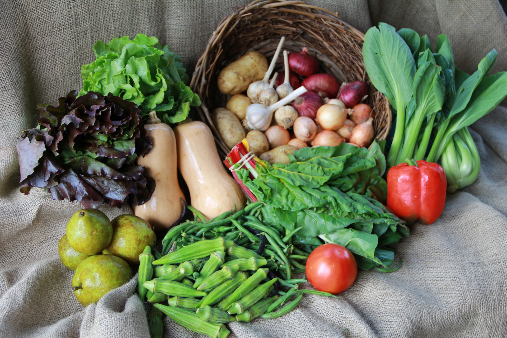Example CSA Box in the Fall