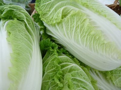 Fall CSA Week 8: Napa Cabbage, Thanksgiving Boxes and 2016 Sign up