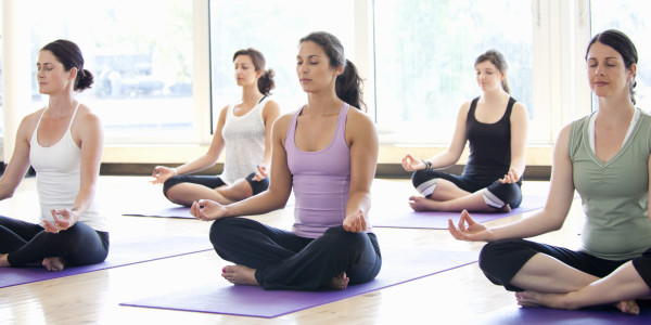 Wellness & Yoga Classes
