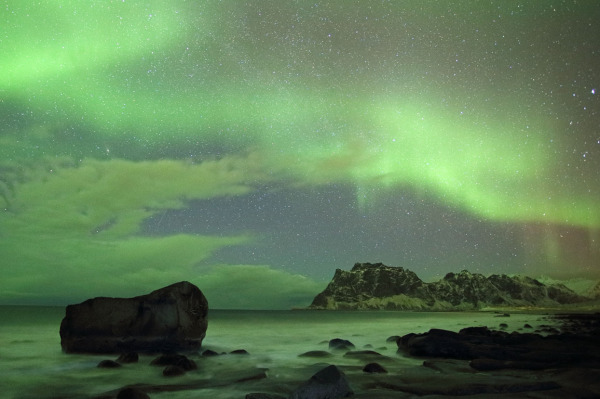 Utakliev aurora, Lofoten Islands, Norway T115