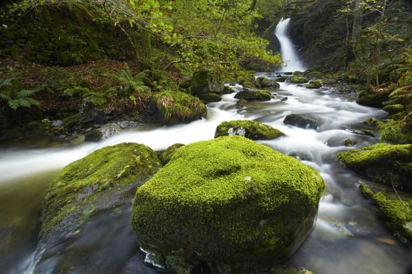 Dolgoch Falls, Snowdonia, L102