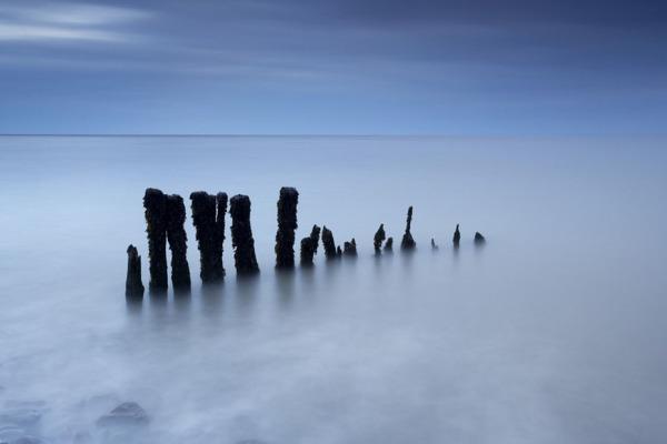 Porlock groynes, Exmoor, Devon, UK C109