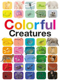 COLORFUL CREATURES By Anita Ganeri