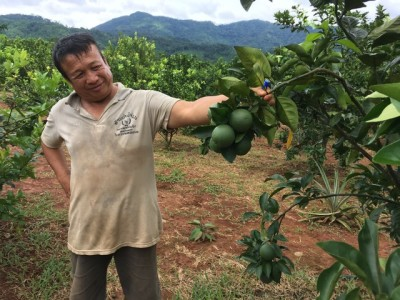 July Laos Update - Rain, rain and more rain!