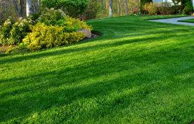 lawn mowing Martha's Vineyard