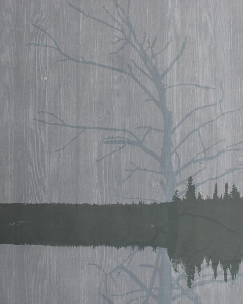 Ghost Pine Series