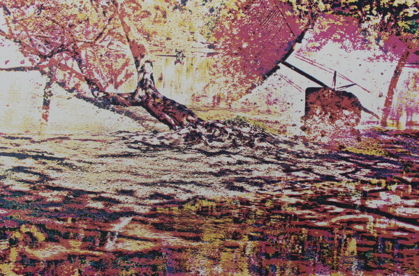 River Reflection in Flux 2