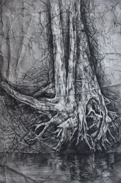 River Roots 1