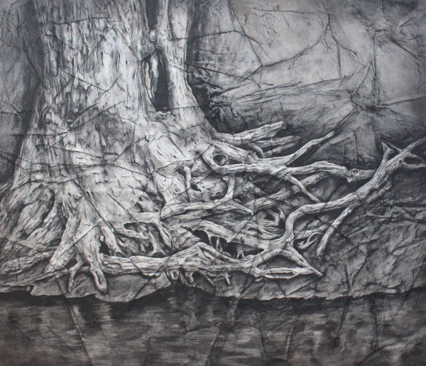 River Roots 2