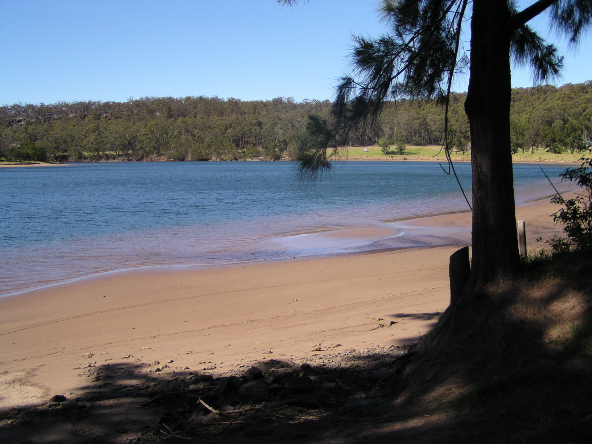 Shoalhaven River Beach at Low Tide