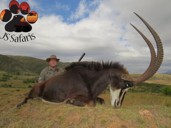 """<img src=""""image.png"""" alt=""""warthog hunts with js safaris"""">"""