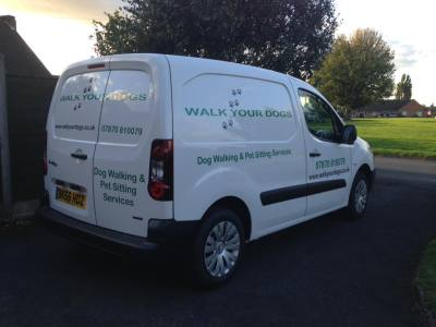 dog walker Droitwich walk your dogs