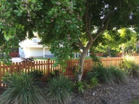 naples wood fence | naples fence company | custom wood fence naples