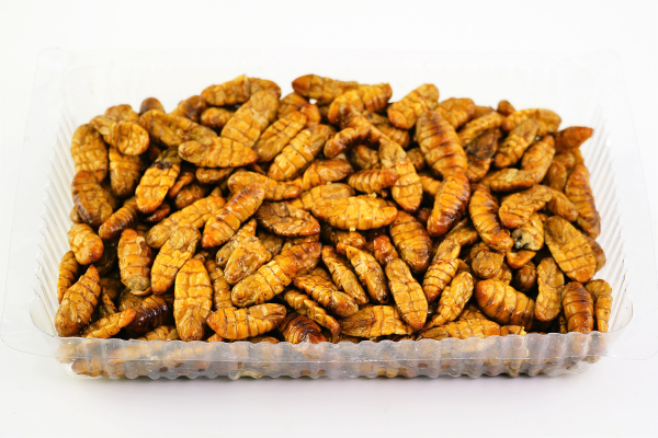 Fried silkworm
