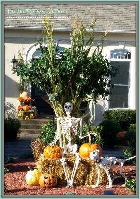 Halloween / Fall Decor