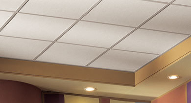 The Acoustical Ceiling Co., Inc.