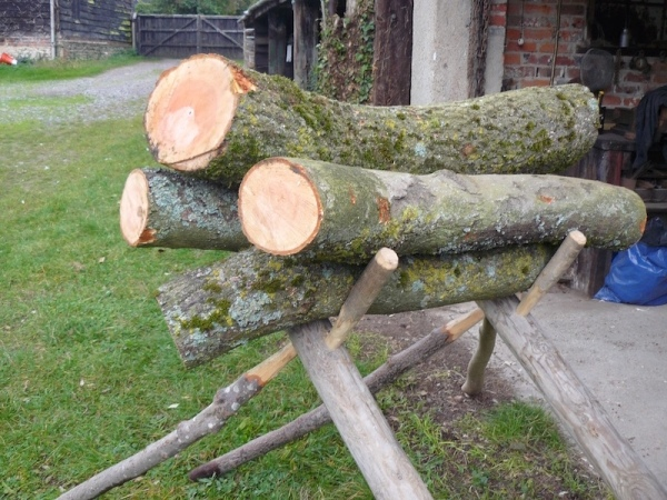ash logs ready to be made into rustic ash wood chairs