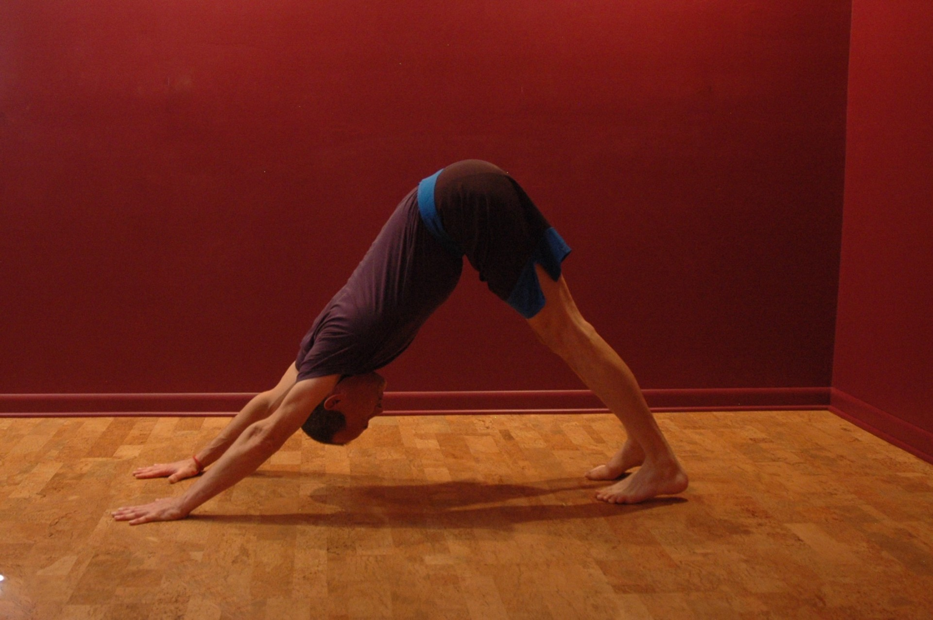 Getting Through the Ups and Downs Part II: Downward Facing Dog