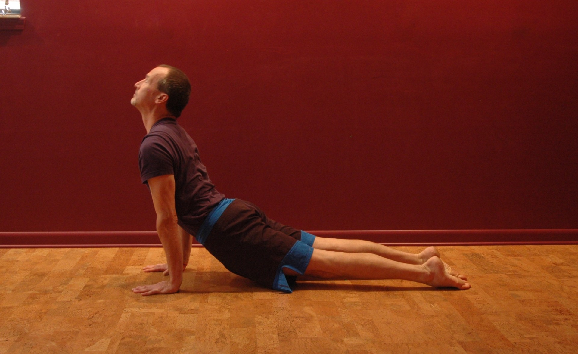 Getting Through the Ups and Downs Part I: Upward Facing Dog