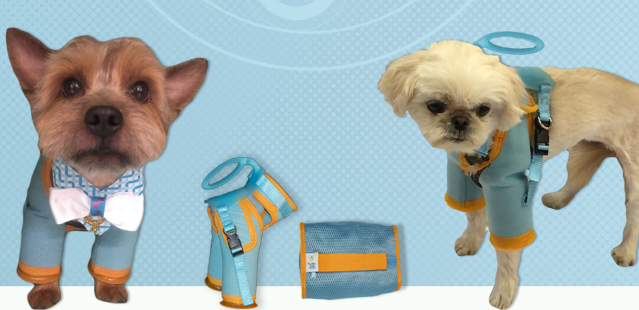 PET RESTRAINT HARNESS