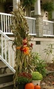 Cornstalks for your Fall Decor!
