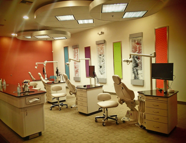 Ortho Bay