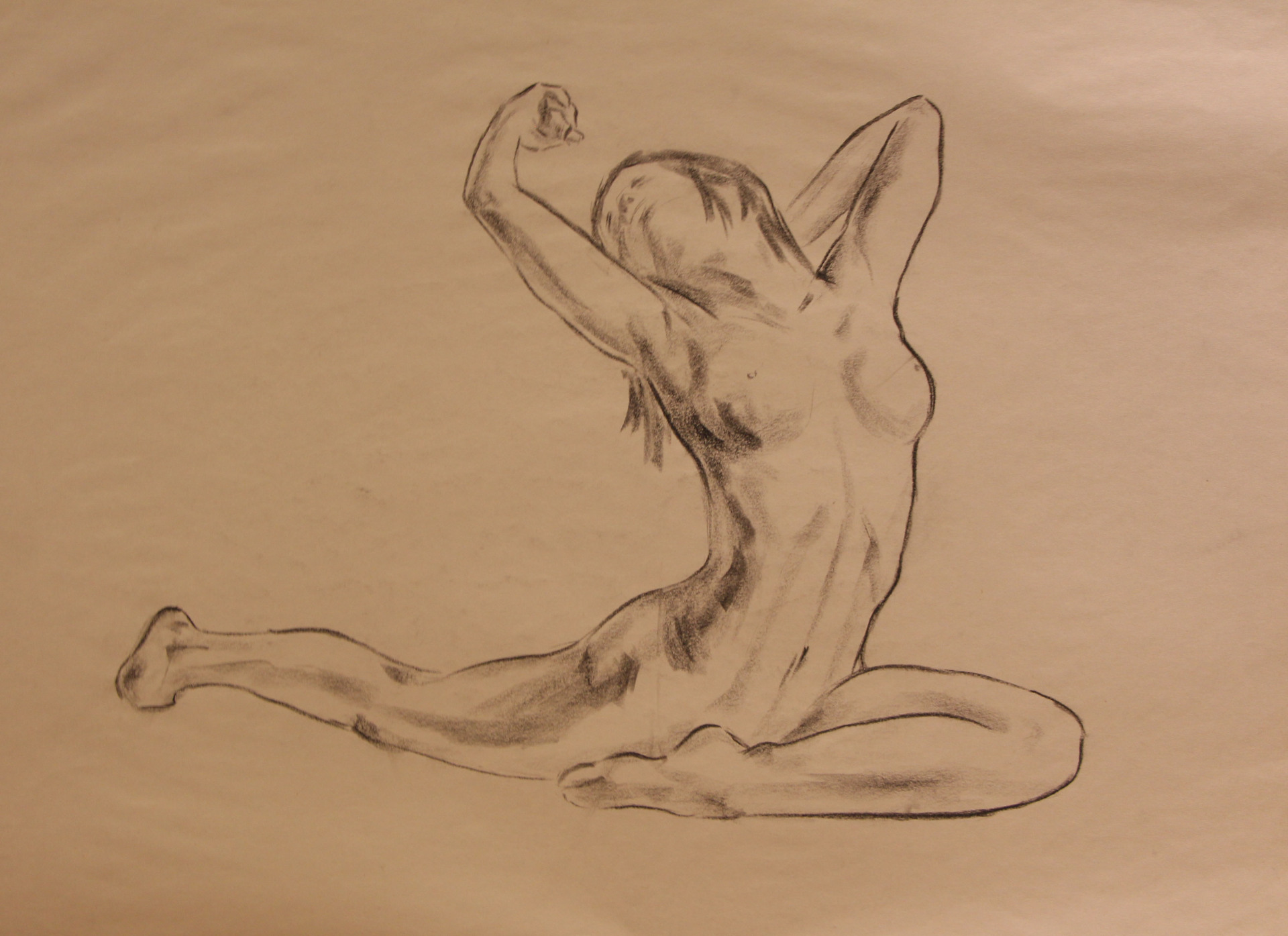 Anatomy Study - Women