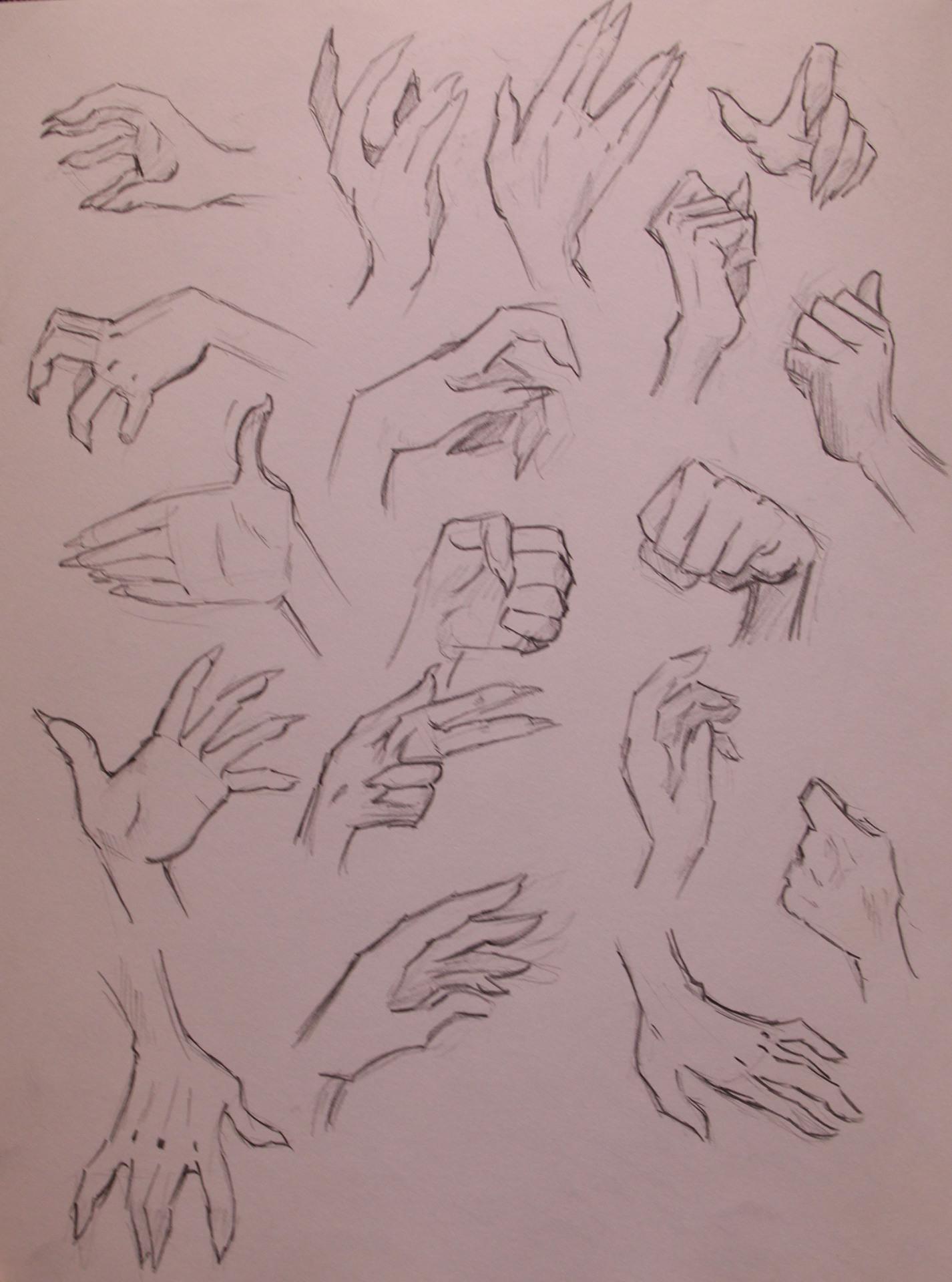 Anatomy Study - Hands Stylized