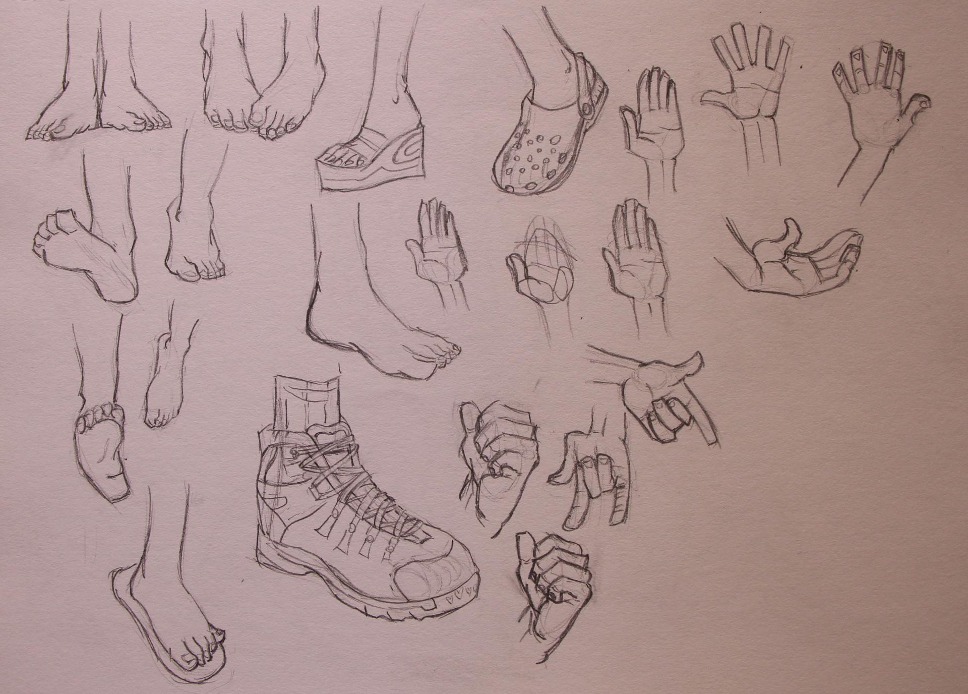 Anatomy Study - Feet