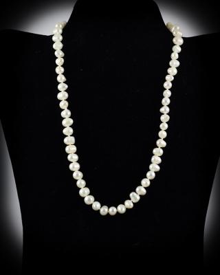 Freshwater Pearls; White; 18″ single strand