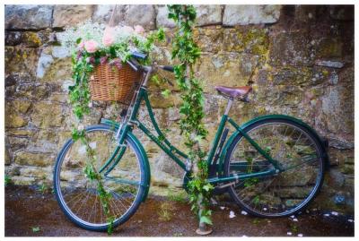 Vintage bike £10