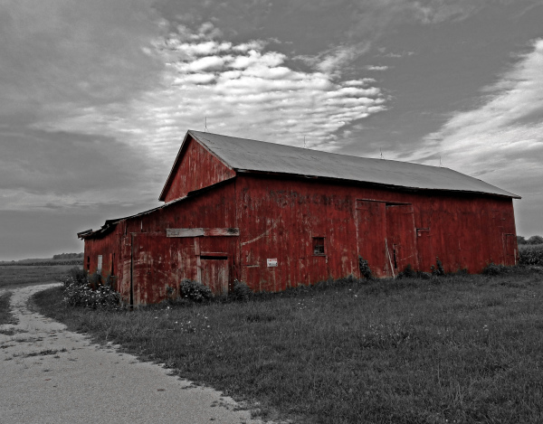 Old Barn - Color on B&W