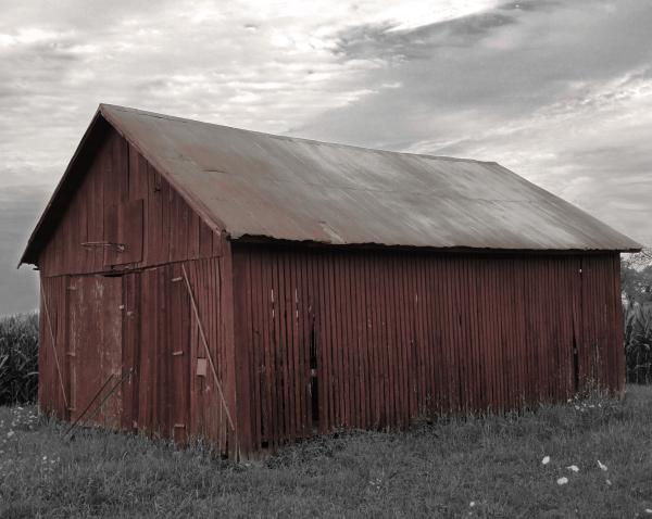 Slat Barn - Desat 0n B&W