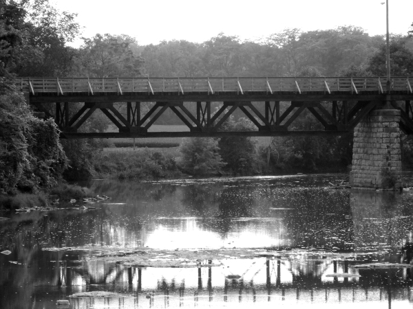 Elmore Train Trestle B&W