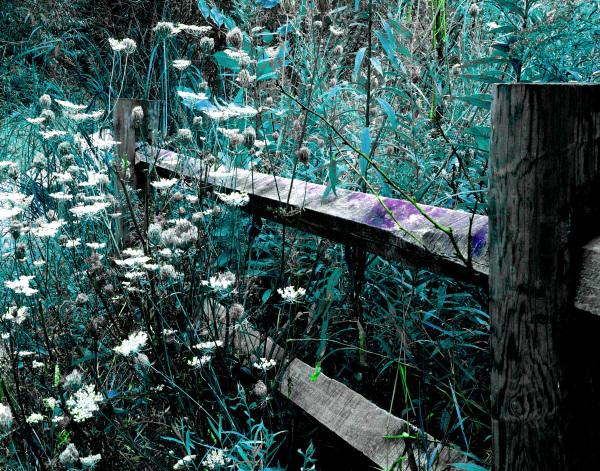 Cyan Fence