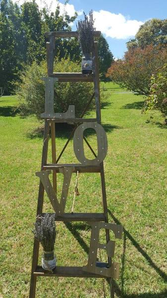 Vintage Timber Ladder