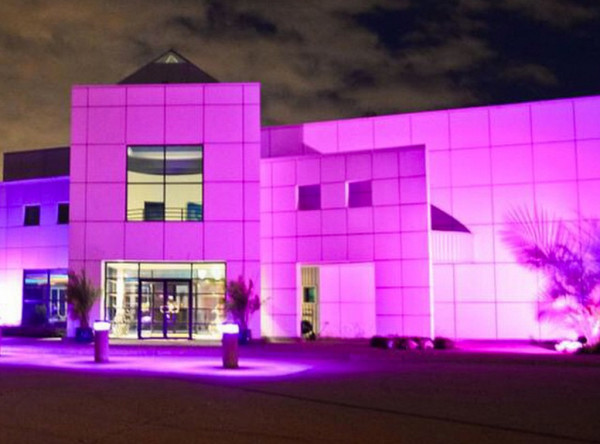 Prince's Paisley Park Is Cleared to Open as a Museum