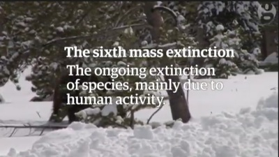 Biological annihilation via the ongoing sixth mass extinction signaled by vertebrate population loss