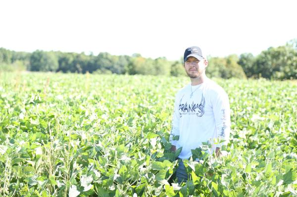 Eagle Seed Beans Food Plots