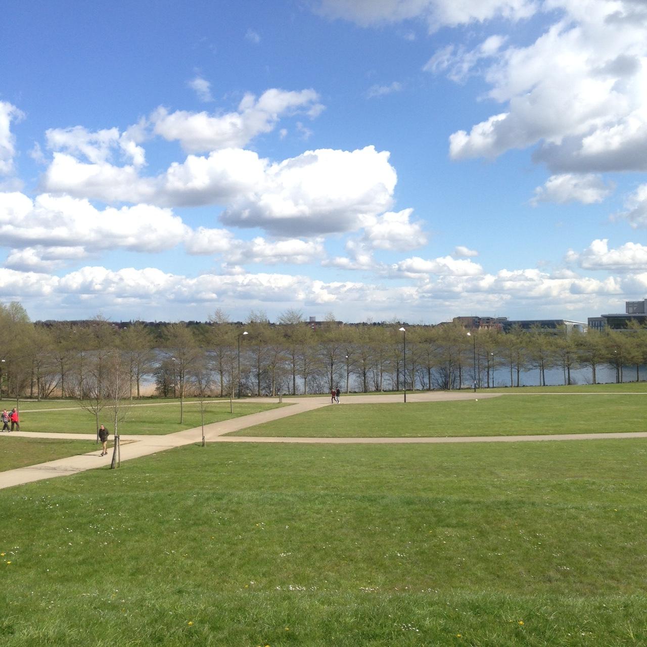 Don Covleone: The Lakeside Saga