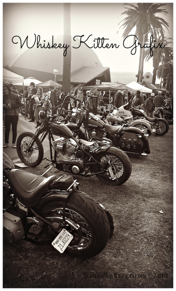 David Mann's Chopperfest