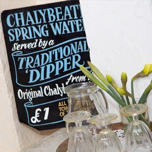 Chalybeate Spring Opening