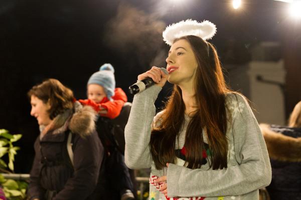 Penshurst Christmas Fayre 2014