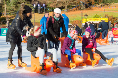 Seal Naming at The TW Ice Rink