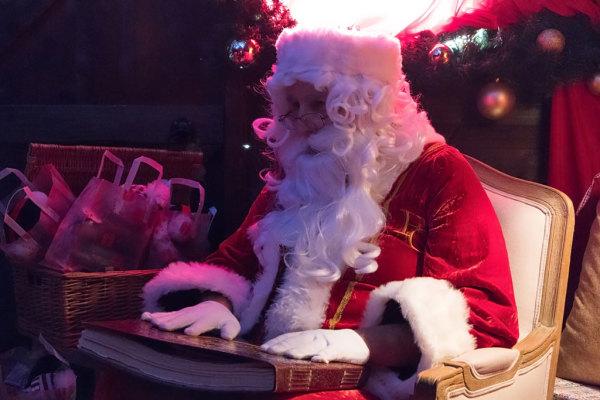 Christmas At Bewl 015