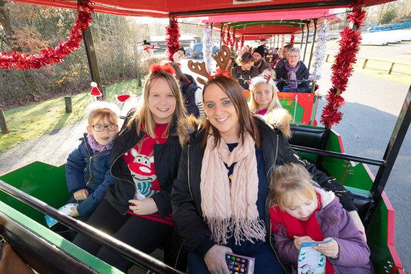 Christmas At Bewl 33