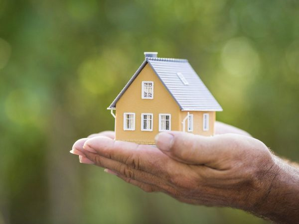 Dementia tax 'would hit property values'