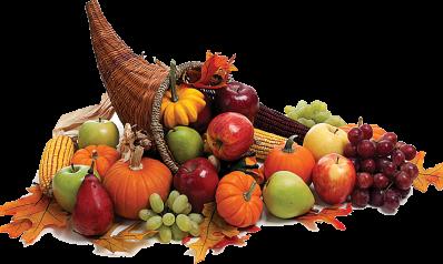 2016 Familia Thanksgiving